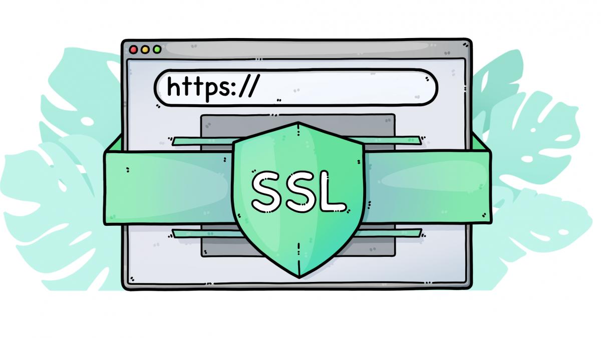 گواهینامه SSL چیست و چه مزایایی دارد؟